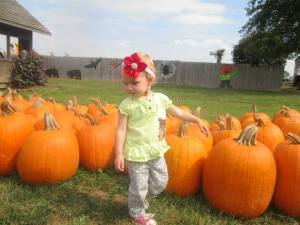Gracie & the Pumpkin Patch