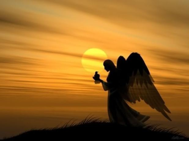 Angels-of-Heaven-who-bring-Good-Tidings-from-Heaven-jesus-23106858-640-480