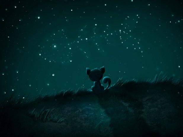 Beautiful Night Sky Wallapers (19)
