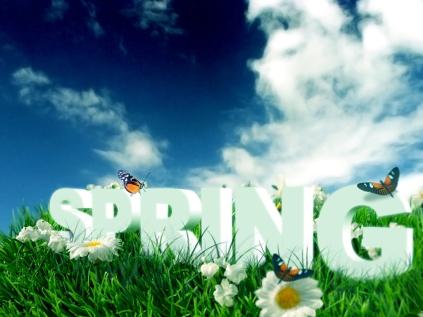 spring-06