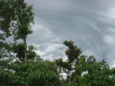 Stormy Weather (1)