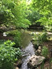 water Garden Two