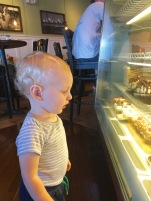 Hudson Observing Cupcakes