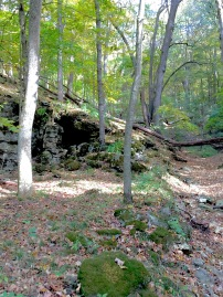 Fall forest cave