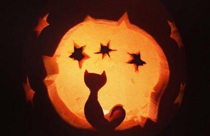 Halloween pumkin Kitty