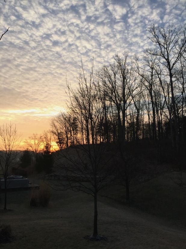 Sunrise 216
