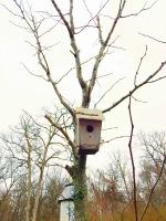 birdhousehome4