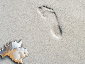 barefoot with shell