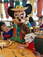 Disney Hudson Don17